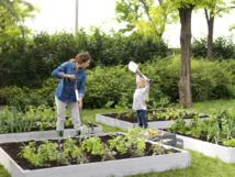 Travail du sol - À chaque jardinier son outil Fiskars