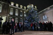 AFSNN/VAL'HOR - Opération sapin de Noël à l'Elysée - Une présence médiatique forte pour toute la filière horticole française, reconnue au plus haut sommet de l'Etat