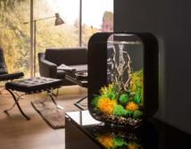 Nouveau : Bio station WR01 QLIMA - Moins de déchets, moins d'odeurs et une cuisine toujours propre