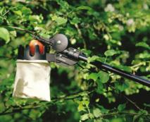 Cueille-fruits UP80 et Échenilloir Solid™ Fiskars