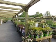 Globe Planter au service des jardins