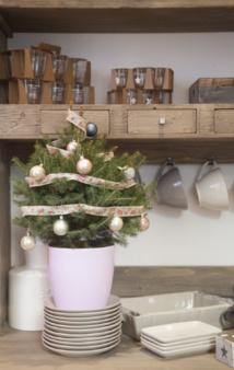 My Little Sapin.fr - Un clic, et le mini-sapin arrive tout décoré à domicile sous 24 à 48 h !