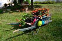 TECNOMA - Newsletter 2015 - Petits jardins, faites le plein d'idées...