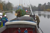 Le sapin de Noël de l'Elysée 2015 : naturel, français, acheminé par voie d'eau puis hippotracté