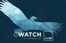 NETXP DEVOILE SES RESULTATS ANNUELS 2015