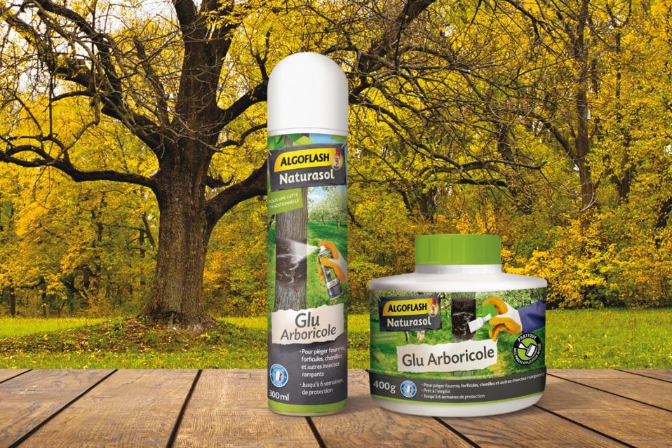 Bande de glu / Glu arboricole