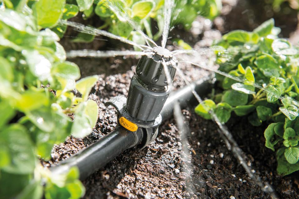 INNOVATION HOZELOCK - GAMME EASYDRIP : Jamais la micro-irrigation n'aura été aussi facile !